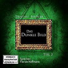 Das Dunkle Bild 3 Hörbuch von Tristan Fiedler Gesprochen von: Florian Hoffmann