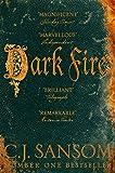 Dark Fire (The Shardlake series Book 2)