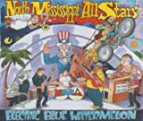 Electric Blue Watermelon North Mississippi Allstars