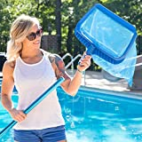 SharkBlu Supplies Swimming Pool Leaf Rake Heavy Duty Pool Maintenance with Deep Mesh Net and Basket, Blue
