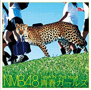 Nmb48 - Nmb48 - Team N 2Nd Stage Seishun Girls [Japan CD] YRCS-95012