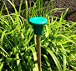(50x) Yuzet Round Rubber Garden Bamboo Cane Eye Protection Topper Caps