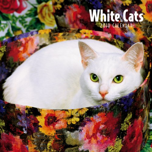 White Cats 2010 Wall