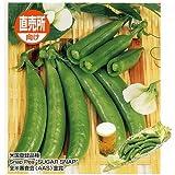 うまい!莢ごと食べる豌豆 スナック(サカタ) 1dl