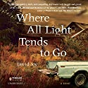 Where All Light Tends to Go (       UNABRIDGED) by David Joy Narrated by MacLeod Andrews