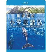 """世界遺産 小笠原諸島 """"東洋のガラパゴス神秘の島々を巡る旅 [Blu-ray]"""