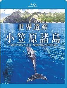 """世界遺産 小笠原諸島 """"東洋のガラパゴス""""神秘の島々を巡る旅 [Blu-ray]"""
