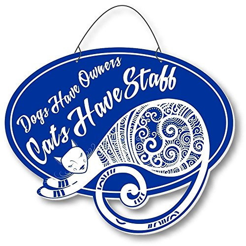 Cool Cats Sassy-Cat Laser-Etched 3-In-1 Plaques Have Staff Blue front-437925