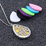 Aromatherapy Essential Oil Diffuser Necklace, Stainless Steel Locket Pendant with 24 Beads Chain and 6 Color Felt Pads ,present gift for your lover(1