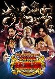 新日本プロレスリング 2010年総集編 [DVD] / 新日本プロレス (出演)