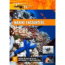 Travel Wild Marine Encounters