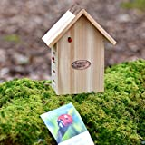 Plant Theatre Lady Bird Lodge & Flower Seeds to Lure Ladybirds - Gift Boxed - Excellent MothersDay Gift