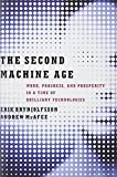 img - for The Second Machine Age: Work, Progress, and Prosperity in a Time of Brilliant Technologies by Brynjolfsson, Erik, McAfee, Andrew 1st edition (2014) Hardcover book / textbook / text book