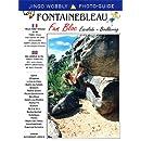 Fun Bloc: Fontainebleau Bloc-Bouldering