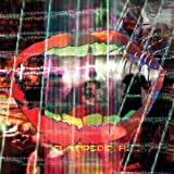 Animal Collective Centipede Hz [VINYL]