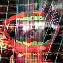 Animal Collective– Centipede Hz