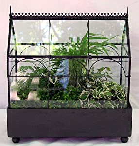 Gothic House Terrarium (Wardian Case) with Live Plants