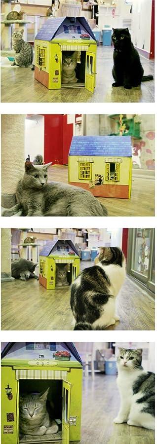 猫のハウス キャッツピア CATSPIA プレイハウス AMANTE イエロー
