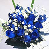 ブルーローズの花束 青いバラ20本&カスミ草、グリーン付き バラの花束【生花】【お祝い・記念日・誕生日・フラワーギフト・バラ】