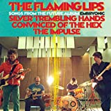 Silver Trembling Hands - The Flaming Lips