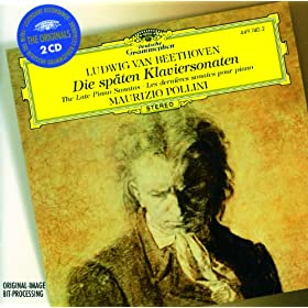 Beethoven: The Late Piano Sonatas (2 CDs)