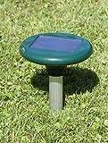 Wühlmausgerät,Wühlmaus Schocker,Wühlmausschreck mit Solar