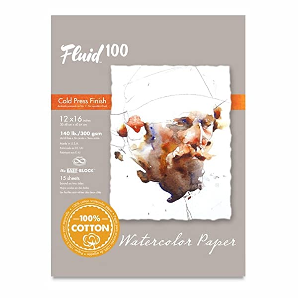 Speedball Art Products 811226 Fluid 100 Artist Watercolor Paper 140 lb Cold Press, 12 x 16 Block, 100% Cotton Natural White (Color: 100% Cotton Natural White, Tamaño: 12 x 16  BLOCK)
