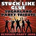Stuck Like Glue (Sugarland Party Tribute)