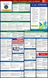 2016 Louisiana State and Federal All-in-one Labor Law Poster – English
