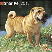 Shar Pei 2012 Wall Calendar #10070-12: Pet Prints, Inc: 9781849813464