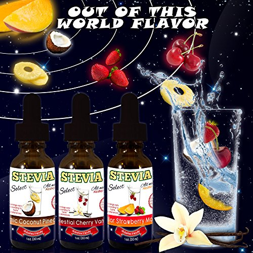Water Flavoring-Stevia Water Enhancers Out of This World Flavor! - 3 Pack (1 oz. bottles) Stevia Drink Flavoring - 45 Bold-90 Light Sugar Free Drinks - NO Artificial Sweeteners! Made From 100% USDA Certified Organic Natural Flavors - Reap The Benefits of