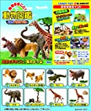地球まるごと!動物図鑑 BOX (食玩)