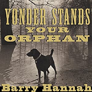 Yonder Stands Your Orphan Audiobook