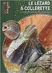 Le L�zard � Collerette: Chlamydosauru...