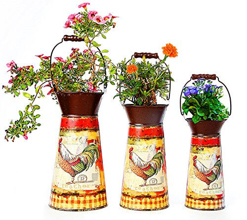 Janazala Metal Flower Pots Designed as Rustic Pitchers with Decorative Vintage Printing of Rooster on Each Flower Pot, Set of 3 0