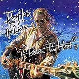 I've Got A Capo On My Brain - Dan Hicks And The Hot Licks