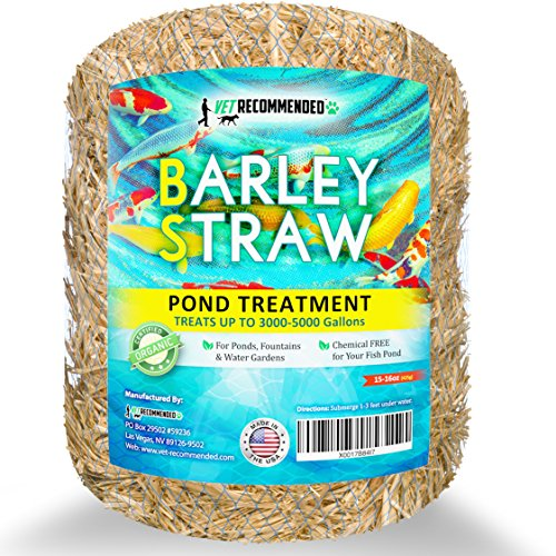 Vet Recommended - Barley Straw for Fish Ponds - Certified Organic - Safe & Natural Pond Cleaner Made in USA (16oz) (Fish Vet compare prices)