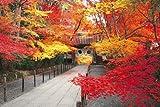 パズルの超達人EX(日本風景・秋) 秋の光明寺-京都
