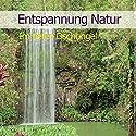 Entspannung Natur: Im tiefen Dschungel Hörbuch von Karl-Heinz Dingler Gesprochen von:  div.
