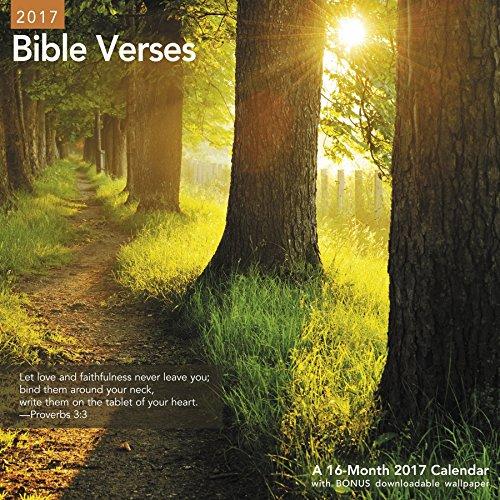 Bible Verses Wall Calendar (2017)