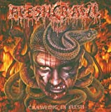 Crawling in Flesh by Fleshcrawl [Music CD]