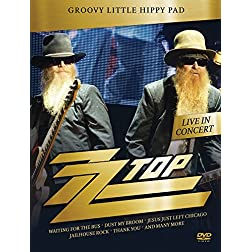 ZZ Top - Groovy Little Hippy Pad