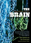 The Brain: Big Bangs, Behaviors, and...