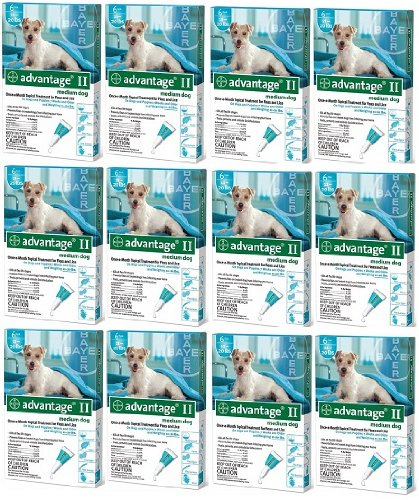 ADVANTAGE II Dog Flea Control 11-20lb Teal 6 Month 12pk