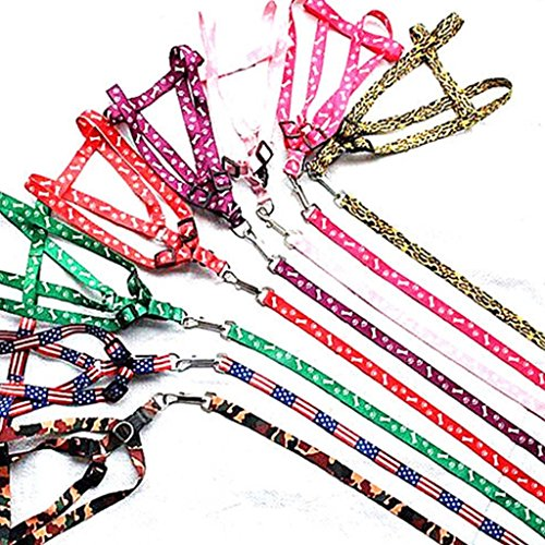 Nylon Pet Cat Doggie Puppy Dog Leash Leads Harness Belt Traction Rope Purple (Wonder Walker Harness compare prices)