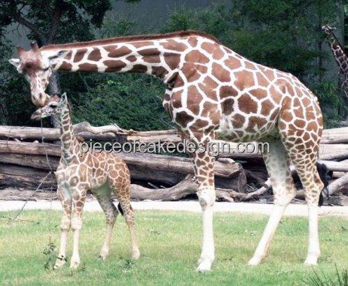 Baby Giraffe Cakes