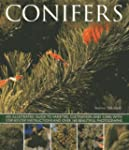 Conifers: An Illustrated Guide to Var...