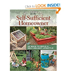 DIY Projects for the SelfSufficient Homeowner  - Betsy Matheson