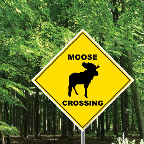 Moose Crossing Sign - 22