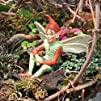 Miniature Fairy Garden Elf Fairy